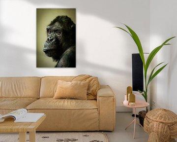 Chimp in gedachten... von Hermen van Laar