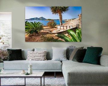 Idyllisch uitzicht op de kust van Sant Elm, Mallorca, Spanje van Alex Winter