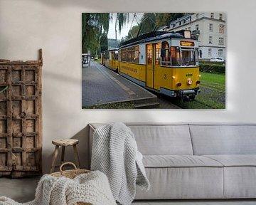 Kirnitzschtalbahn in Bad Schandau (Saksisch Zwitserland) van t.ART