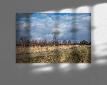 wolken boven het Peellandschap