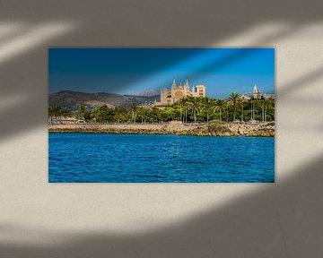 De kust van Palma de Majorca met zicht op de beroemde kathedraal La Seu van Alex Winter