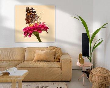 Vlinder op een bloem in Griekenland op Samos van Monique Giling