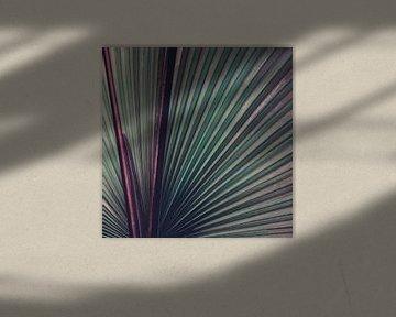 Nature Abstracted van Insolitus Fotografie