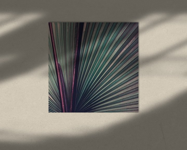 Impression: Nature Abstracted sur Insolitus Fotografie