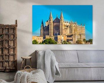 Vooraanzicht van de beroemde kathedraal van Palma de Majorca, Spanje van Alex Winter