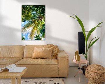 Groene palmboom in Cuba van Barbara Koppe