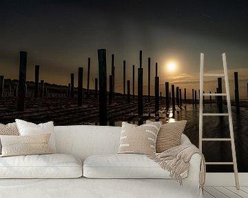 Het Palendorp bij Petten vastgelegd midden in de nacht met volle maan. van Jaap van den Berg