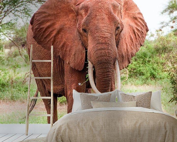Sfeerimpressie behang: African Elephant van Alex Hiemstra