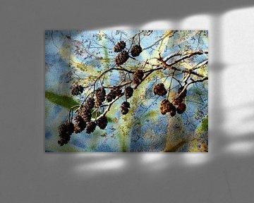 Herbstträume van Heidrun Carola Herrmann
