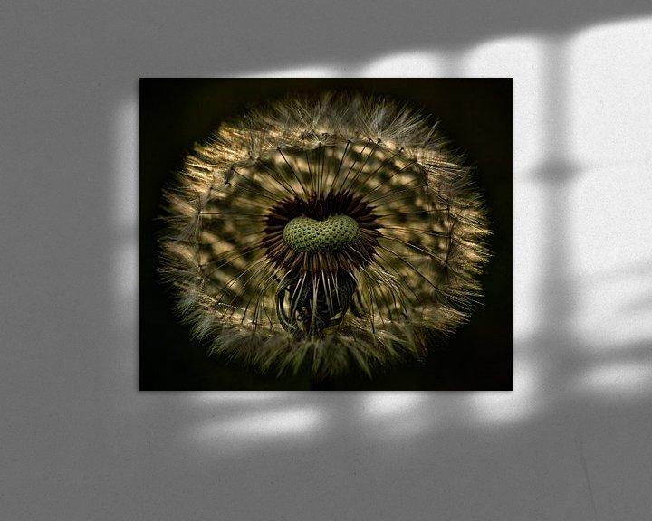 Sfeerimpressie: Paardenbloem van Jan Paul Kraaij