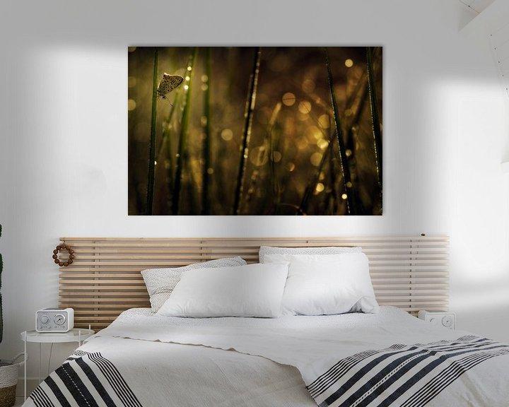 Sfeerimpressie: Bruine vuurvlinder van Jan Paul Kraaij