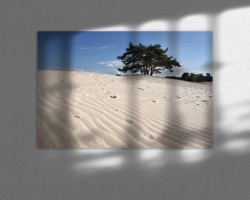 Bomen en Duinen VI van Mark Leeman