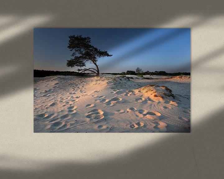 Sfeerimpressie: Bomen en duinen V van Mark Leeman