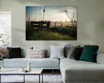 Sunrise van Willem-Jan Brink