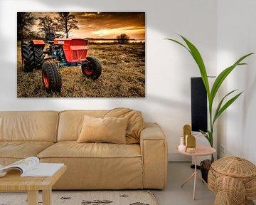 Oude Tractor in het riet van Sjoerd van der Wal