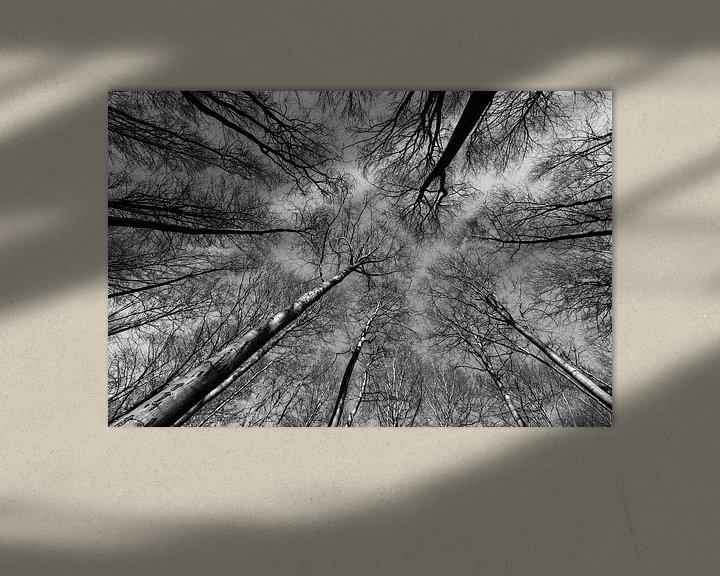 Sfeerimpressie: Reach out to the sky - Zwart/Wit van Remco Bosshard