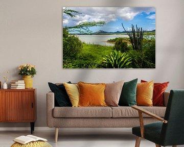Natuurpark in Bonaire van Joke Van Eeghem