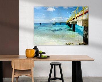 Exotische zee van Bonaire van Joke Van Eeghem