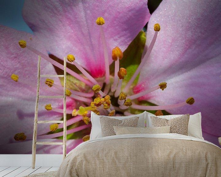Sfeerimpressie behang: Spring - awakening Nature van Ursula Di Chito
