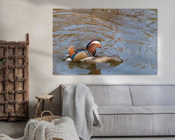 Beispiel: Mating Mandarin Ducks von Erik Zachte