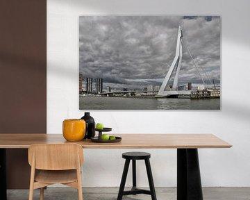 Rotterdam met de Erasmus brug. von Tilly Meijer