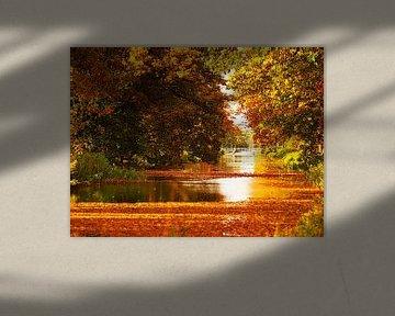 Apeldoorns kanaal in herfstkleuren