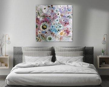 Flowers, daisy, Mum, Posy, Pansy, Pretty von Rhonda Clapprood