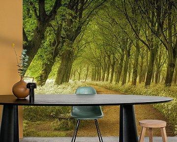 A Seat Not Taken van Lars van de Goor