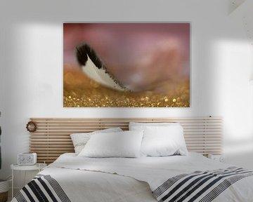 Een veer in het ochtendlicht. van Kvinne Fotografie