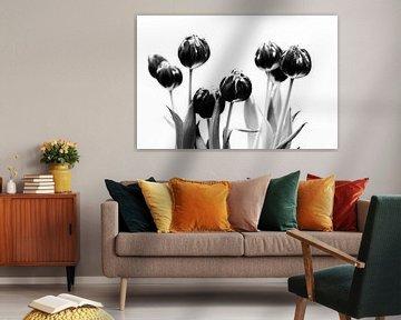 Tulips black and white von Jacco Richters