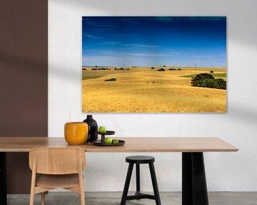 Landschap Zuid Australië van Henk van den Brink