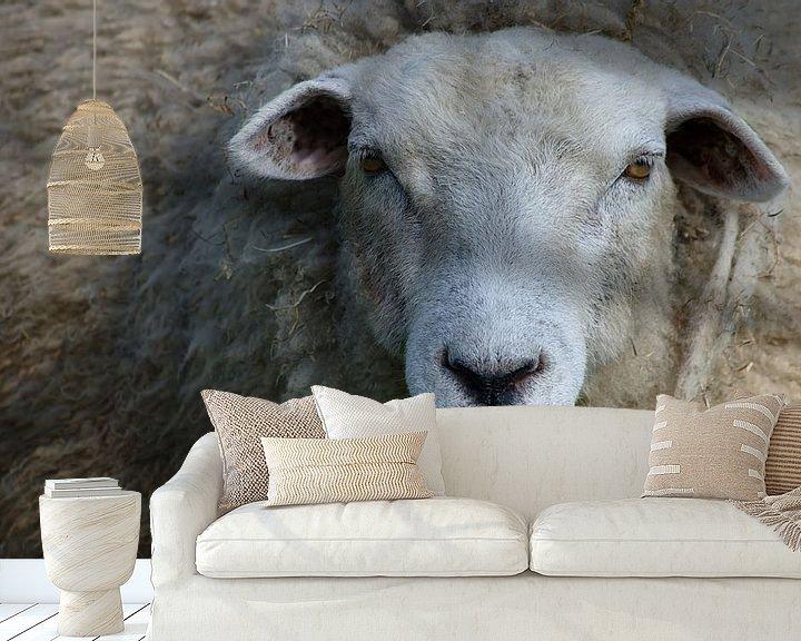 Sfeerimpressie behang: Here's looking at ya! van Mike Bing