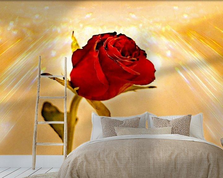 Sfeerimpressie behang: Sunshine on a Rose van Leo Huijzer