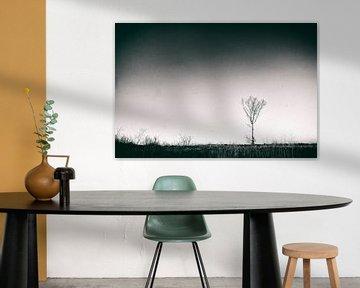 Landscape II von Rene Kuipers