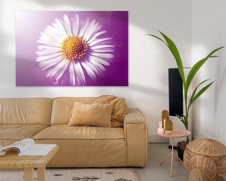Beispiel: Gänseblümchen von Roswitha Lorz