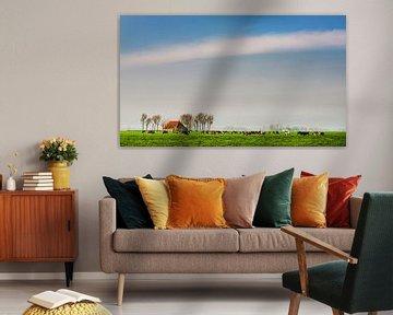 Friesland grasland von Harrie Muis