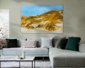 Helgoland Duin van Daniela Beyer