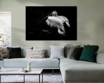 Bright white von Anne-Marie Vermaat