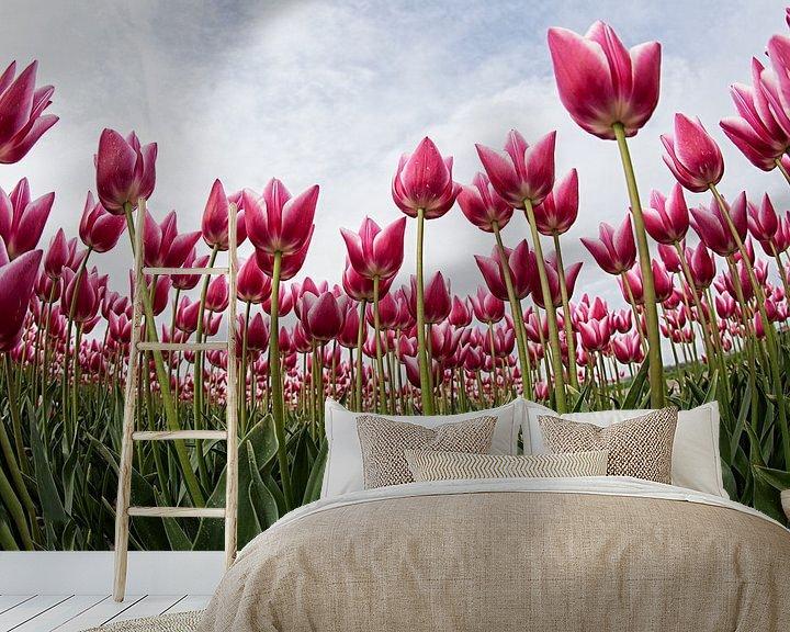 Sfeerimpressie behang: tulpen van Anne-Marie Vermaat