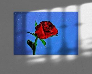 A Rose in the rain von Leo Huijzer