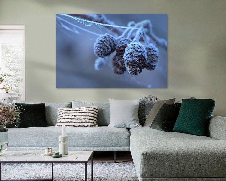 Beispiel: Elzenproppen met rijp von Frouwkje Fotografie