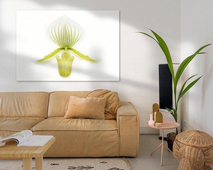 Sfeerimpressie: Orchidee in high key van Frouwkje Fotografie