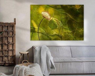 Arty wings van Irene Lommers