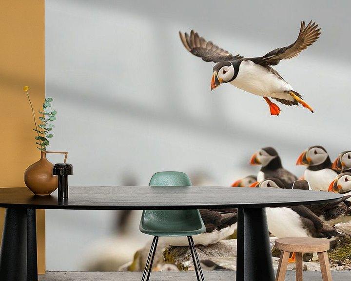 Sfeerimpressie behang: Incomming puffin van Pim Leijen