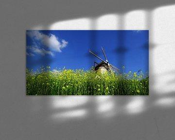 Windmolen tegen blauwe lucht von Wijnand Kroes