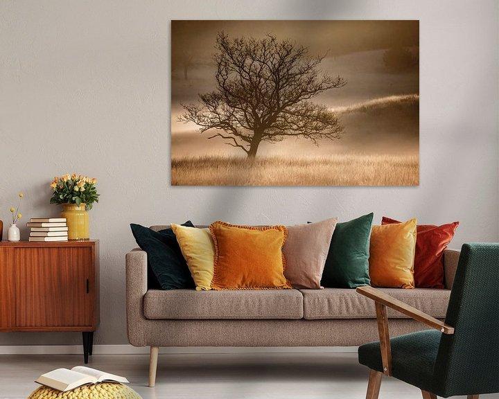 Sfeerimpressie: Solitaire boom in nevel van Linda Raaphorst