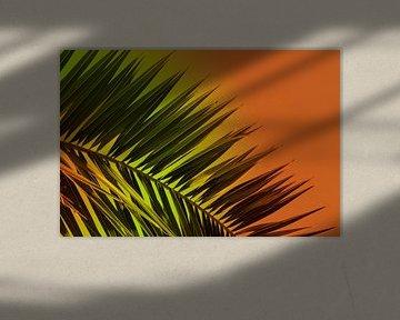 Varen - Zonsondergang van Kevin van Lieshout