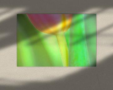 Color your life VI van Richard Marks