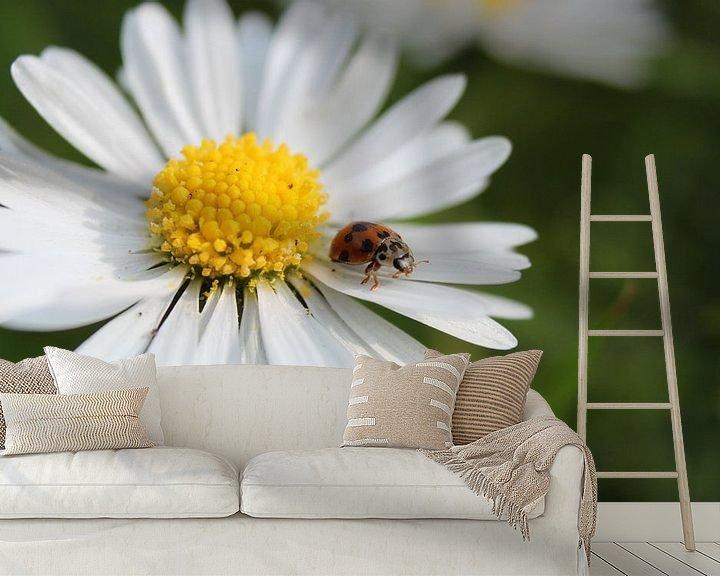 Sfeerimpressie behang: madelieveheersbeestje van Kaa. M