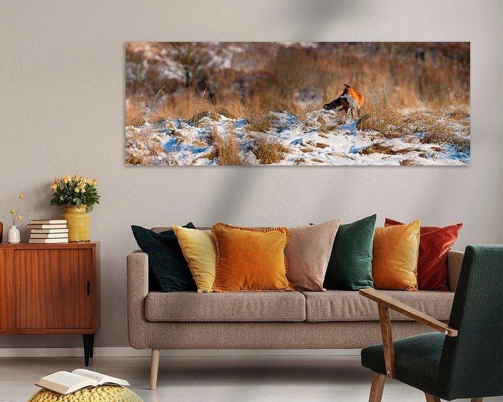 Sfeerimpressie: Vos in de sneeuw panorama van Anton de Zeeuw